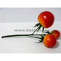 V.paradajz BV-17