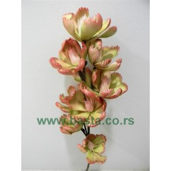 Lux grana magnolija 1231