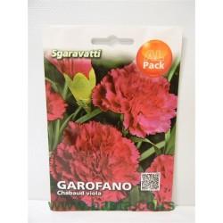Karanfil šabo ružičasti MA