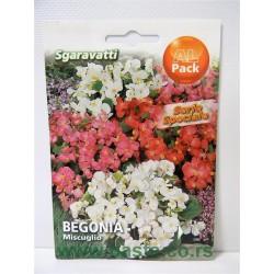Begonia mix MA