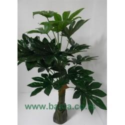Ves.drvo aralija 6325