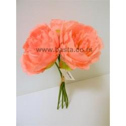 V.b.bozur 6533 rozi