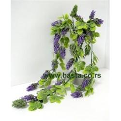 V. puzavica hmelj 949 lila