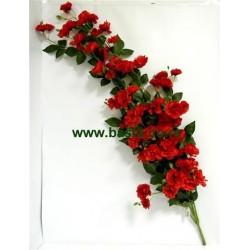 V. puzavica ruza 1230 crvena