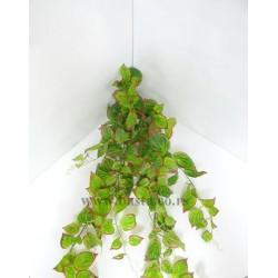 Vestacka puzavica zeleno/ crveni listic 1065
